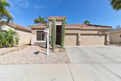 Maricopa County Single Family Home For Sale: 13589 W Holly Street