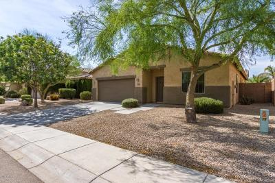 San Tan Valley Single Family Home For Sale: 2863 W William Lane