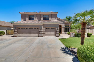 Glendale AZ Single Family Home For Sale: $559,000