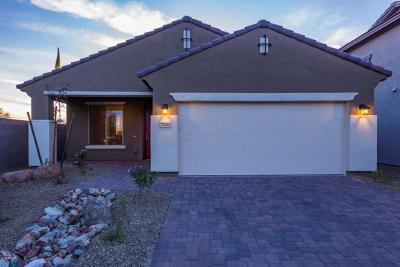 Surprise Single Family Home For Sale: 17906 W Via Del Sol