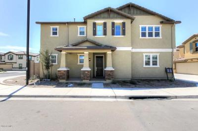 Goodyear Single Family Home For Sale: 16605 W Culver Street