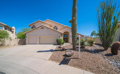 Cave Creek Single Family Home For Sale: 4320 E Barwick Drive