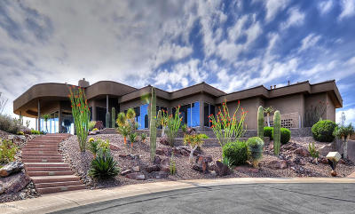 Fountain Hills Single Family Home For Sale: 11102 N Viento Court