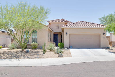 Goodyear Single Family Home For Sale: 17705 W Agave Road