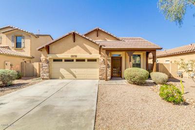 Estrella Single Family Home For Sale: 18374 W La Mirada Drive