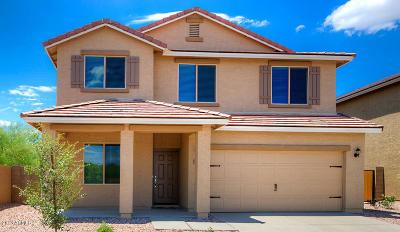 Florence Single Family Home For Sale: 13097 E Desert Lily Lane