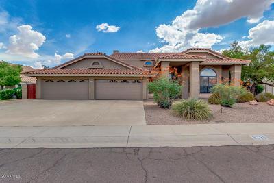 Phoenix Single Family Home For Sale: 3335 E Desert Flower Lane