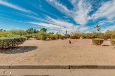 Paradise Valley Residential Lots & Land For Sale: 10242 N 58th Street