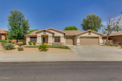 Goodyear Single Family Home For Sale: 2801 N 144th Drive