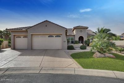 Goodyear AZ Single Family Home For Sale: $775,000