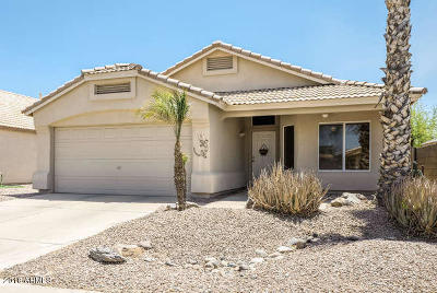 Chandler Single Family Home For Sale: 101 W Manor Street