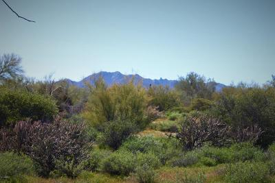 Scottsdale Residential Lots & Land For Sale: 17400 E Quail Track Lot G Road