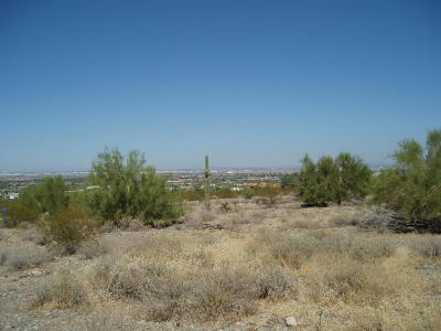 Laveen Residential Lots & Land For Sale: 2999 W Cheyenne Drive