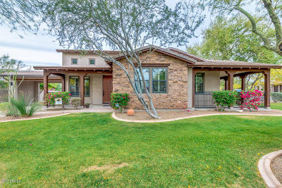 Scottsdale Single Family Home For Sale: 9494 E Ironwood Bend