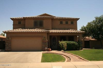 Gilbert Single Family Home For Sale: 2605 S Buckaroo Trail