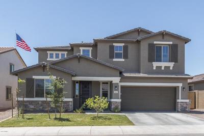 Buckeye Single Family Home For Sale: 1656 N 213th Lane