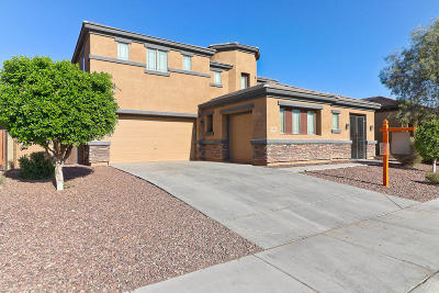Sun City Single Family Home For Sale: 23120 N 120th Lane