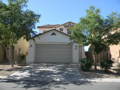 Maricopa Single Family Home For Sale: 40423 W Helen Court