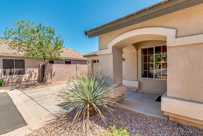 Mesa Single Family Home For Sale: 1754 N Seton