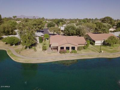 Mesa Single Family Home For Sale: 536 Leisure World