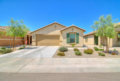 Maricopa Single Family Home For Sale: 40968 W Portis Drive