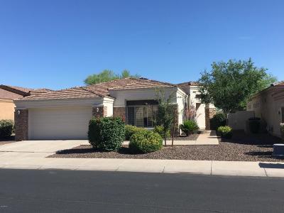Phoenix Single Family Home For Sale: 2018 E Valencia Drive