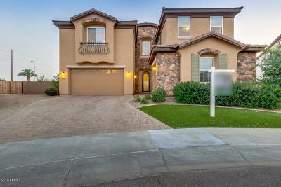 Chandler Single Family Home For Sale: 980 S Marie Drive