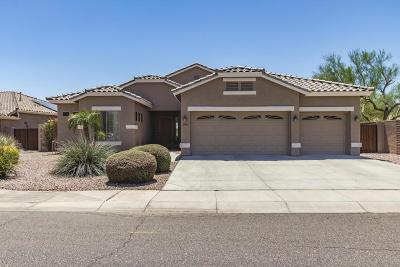 Phoenix Single Family Home For Sale: 4401 W Buckskin Trail
