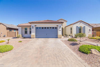 Gilbert Single Family Home For Sale: 2850 E Bellerive Drive