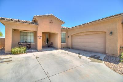 Casa Grande Single Family Home For Sale: 2590 E San Isido Trail