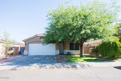 Phoenix Single Family Home For Sale: 8113 W Lumbee Street