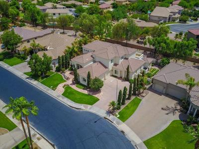 Chandler Single Family Home For Sale: 751 W Azalea Drive