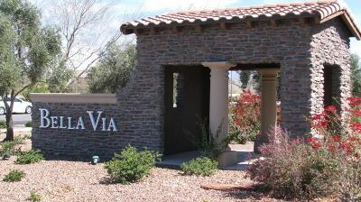 Mesa Single Family Home For Sale: 11048 E Stearn Avenue