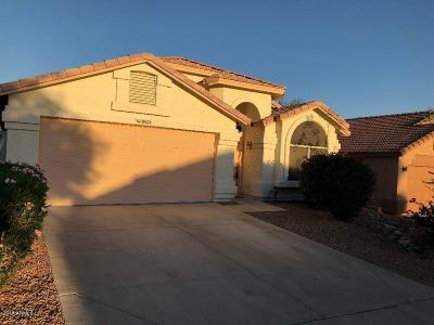 Phoenix Single Family Home For Sale: 19023 N 19 Place