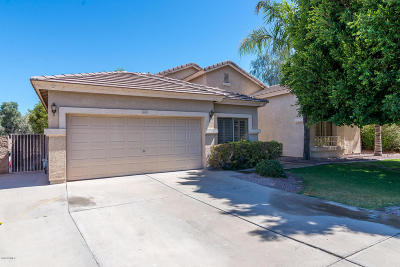 Gilbert Single Family Home For Sale: 1069 S Palomino Creek Drive