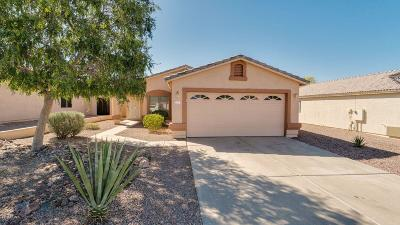 Gold Canyon Single Family Home For Sale: 6823 S Crimson Sky Place