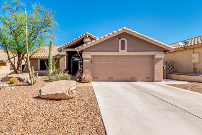 Gold Canyon AZ Single Family Home For Sale: $259,900