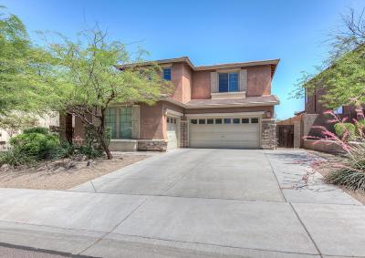 Peoria Single Family Home For Sale: 8513 W Desert Elm Lane