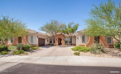 Phoenix Single Family Home For Sale: 3968 E Expedition Way