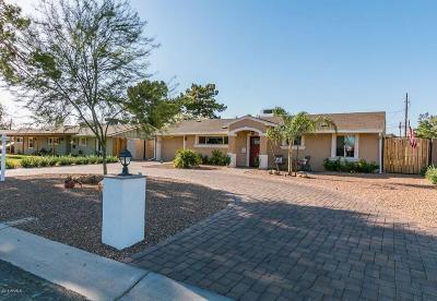 Phoenix Single Family Home For Sale: 1710 E Palo Verde Drive
