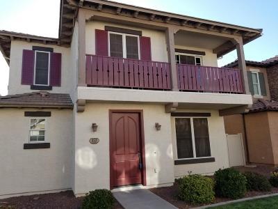 Gilbert Single Family Home For Sale: 859 S Huish Drive