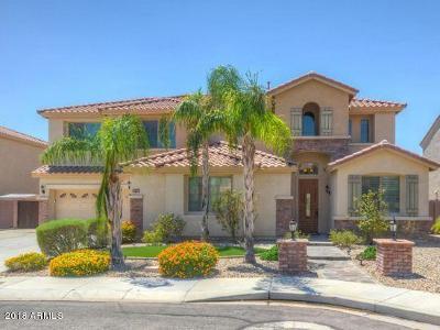 Phoenix Single Family Home For Sale: 27410 N Gidiyup Trail