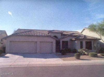 Cave Creek Single Family Home For Sale: 4954 E Skinner Drive