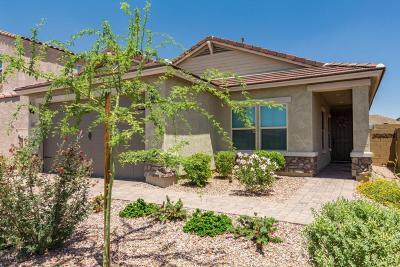 Phoenix Single Family Home For Sale: 1740 W Bonanza Drive