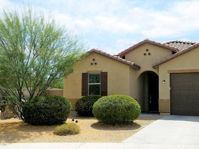 Goodyear AZ Single Family Home For Sale: $289,900