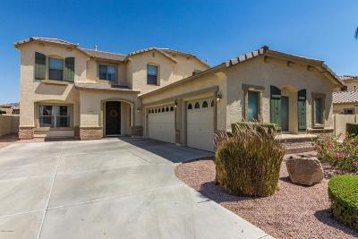 Queen Creek Single Family Home For Sale: 19766 E Carriage Way