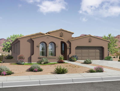 Queen Creek AZ Single Family Home For Sale: $362,990