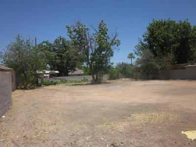 Mesa Residential Lots & Land For Sale: 1014 E Broadway Road
