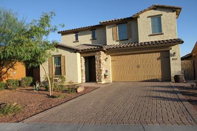 Phoenix Single Family Home For Sale: 2533 W Brisa Drive