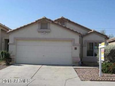 Phoenix Single Family Home For Sale: 2011 E Villa Maria Drive